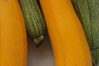 Is biologische voeding gezonder?