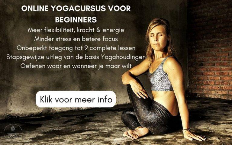 Review: Yoga stap voor stap van Happy with Yoga