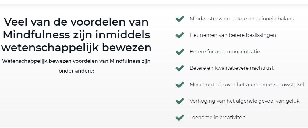 review mindfulness voor het dagelijks leven